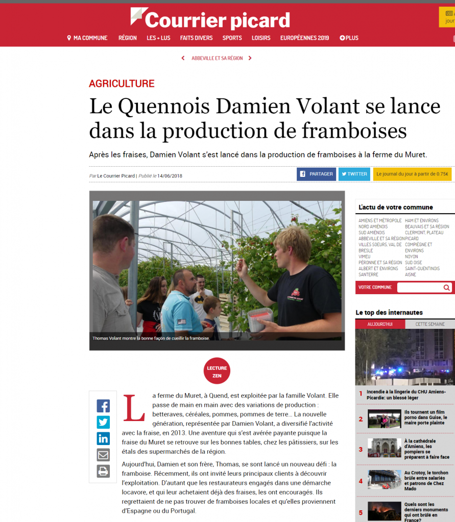 Le Quennois Damien Volant se lance dans la production de framboises -_ - www.courrier-picard.fr
